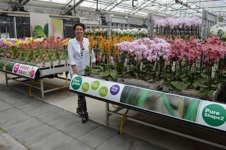 Mooi artikel van Bloemen- en plantennieuws over Orchideeëndagen!